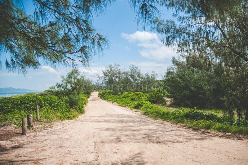 Αμμώδης δρόμος εκτός από τον ωκεανό σε Florianopolis, Βραζιλία στοκ φωτογραφία με δικαίωμα ελεύθερης χρήσης