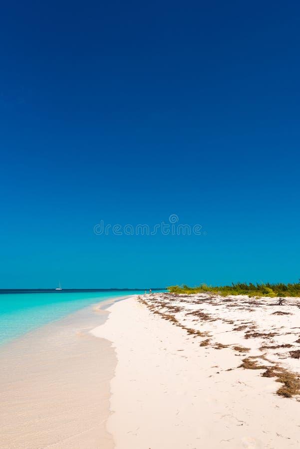 Αμμώδης παράδεισος Playa παραλιών του νησιού Cayo βραδύτατου, Κούβα Διάστημα αντιγράφων για το κείμενο κάθετος στοκ εικόνες με δικαίωμα ελεύθερης χρήσης