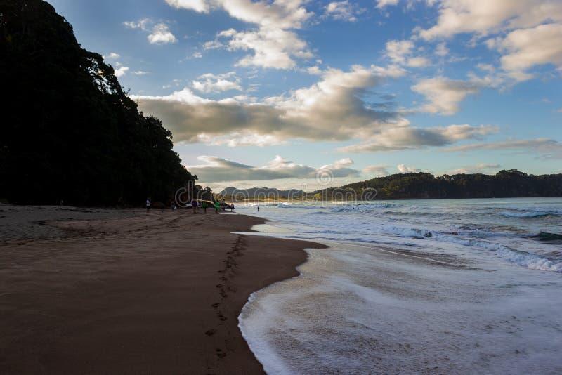 Αμμώδης παραλία κοντά στη Νέα Ζηλανδία ' παραλία ζεστού νερού του s στο μυστήριο τοπίο βραδιού με τον ήρεμο Ειρηνικό Ωκεανό στοκ φωτογραφίες με δικαίωμα ελεύθερης χρήσης