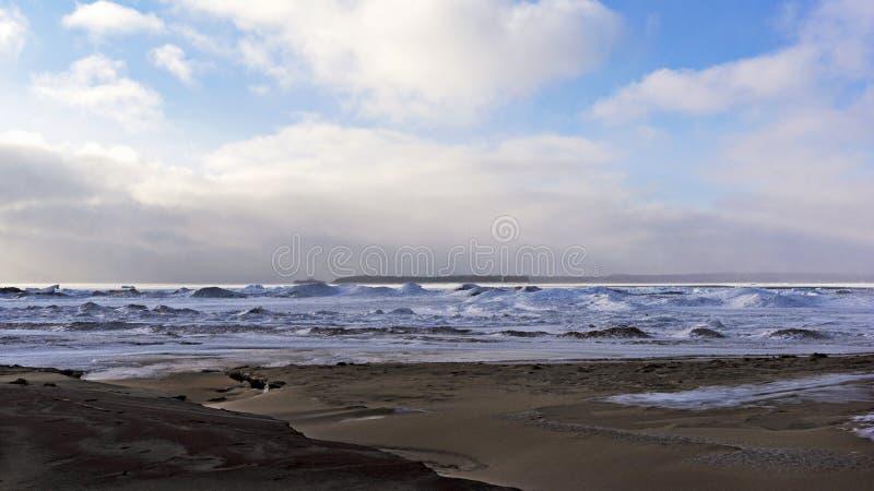 Αμμώδης παραλία κόλπων το χειμώνα - μικροσκοπικός δήμος, Οντάριο στοκ εικόνες