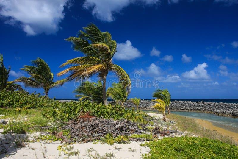 Αμμώδες νησί στοκ εικόνες