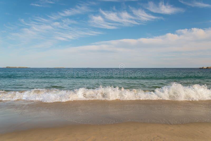 Αμμώδης ωκεάνια παραλία στοκ εικόνες