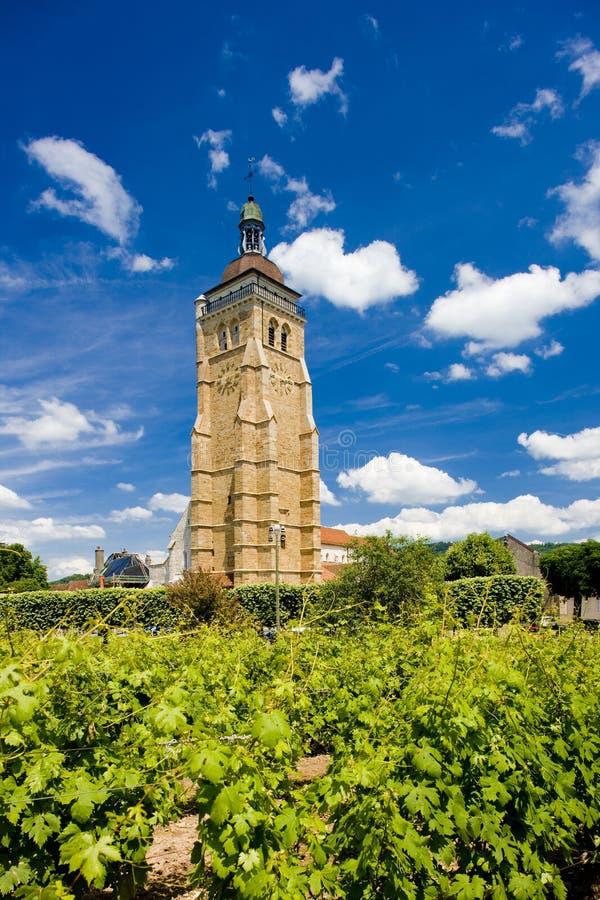 αμπελώνας της Γαλλίας arbois στοκ εικόνα με δικαίωμα ελεύθερης χρήσης