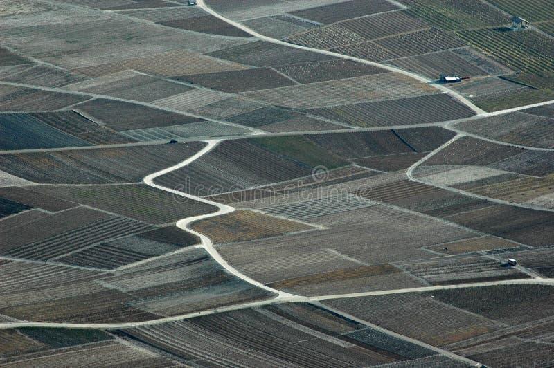 αμπελώνες κοιλάδων Ροδ&alp στοκ εικόνες με δικαίωμα ελεύθερης χρήσης