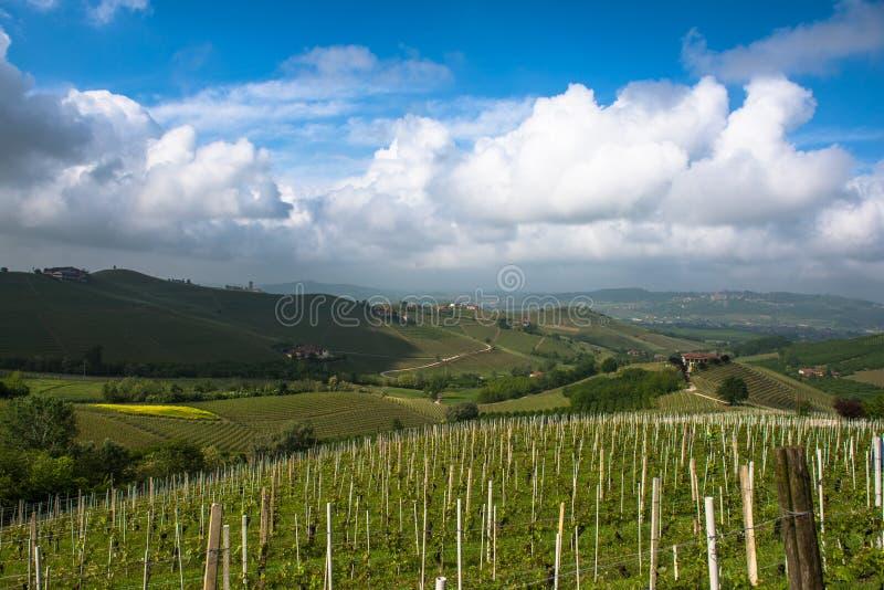 Αμπελώνες Langhe, Piedmont, παγκόσμια κληρονομιά της ΟΥΝΕΣΚΟ στοκ φωτογραφία με δικαίωμα ελεύθερης χρήσης