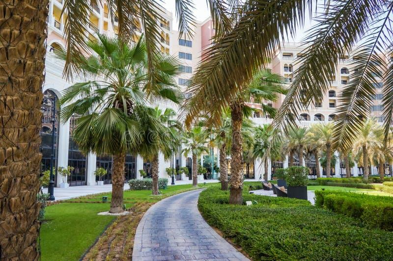 Αμπού Νταμπί Το καλοκαίρι 2016 Εξωραϊσμένη όαση στο ξενοδοχείο Ritz Carlton στοκ φωτογραφίες με δικαίωμα ελεύθερης χρήσης