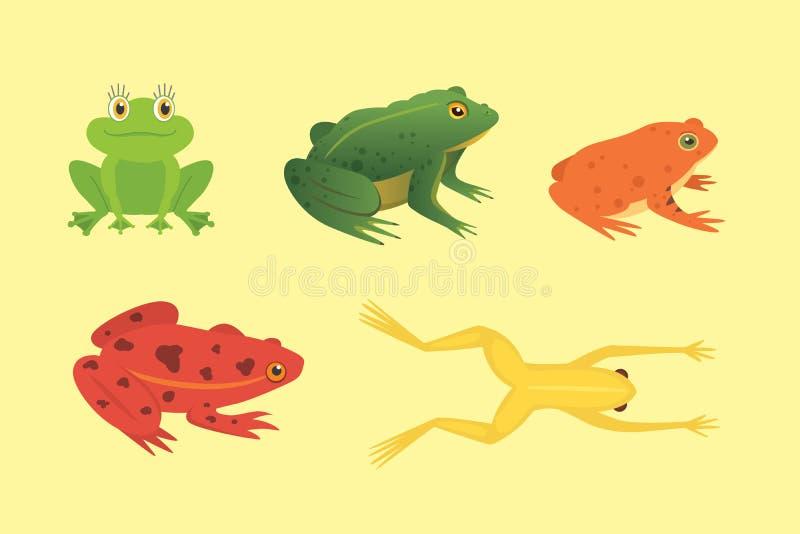 Αμφίβιο σύνολο PrintExotic Βάτραχοι στη διαφορετική διανυσματική απεικόνιση κινούμενων σχεδίων μορφών που απομονώνεται Τροπικά ζώ ελεύθερη απεικόνιση δικαιώματος