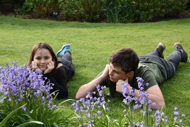 Αμφιθαλείς που χαλαρώνουν στον κήπο στοκ εικόνα
