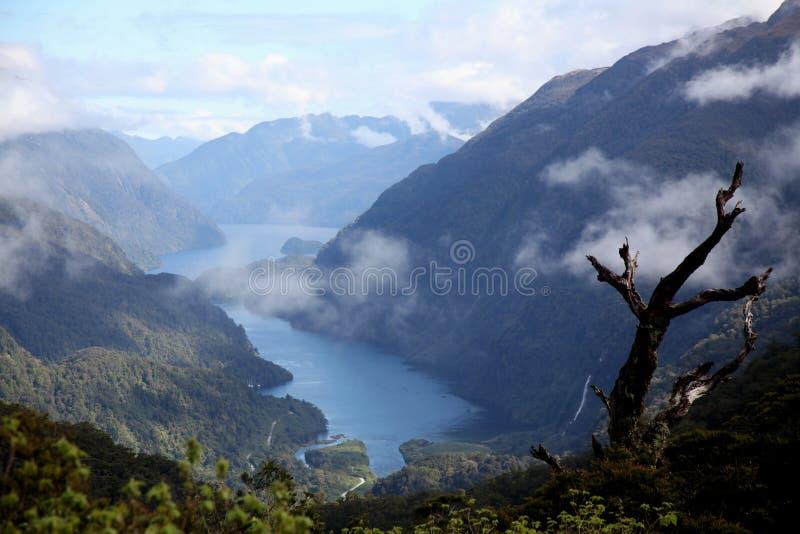 Αμφισβητήσιμος ήχος, Νέα Ζηλανδία στοκ φωτογραφίες