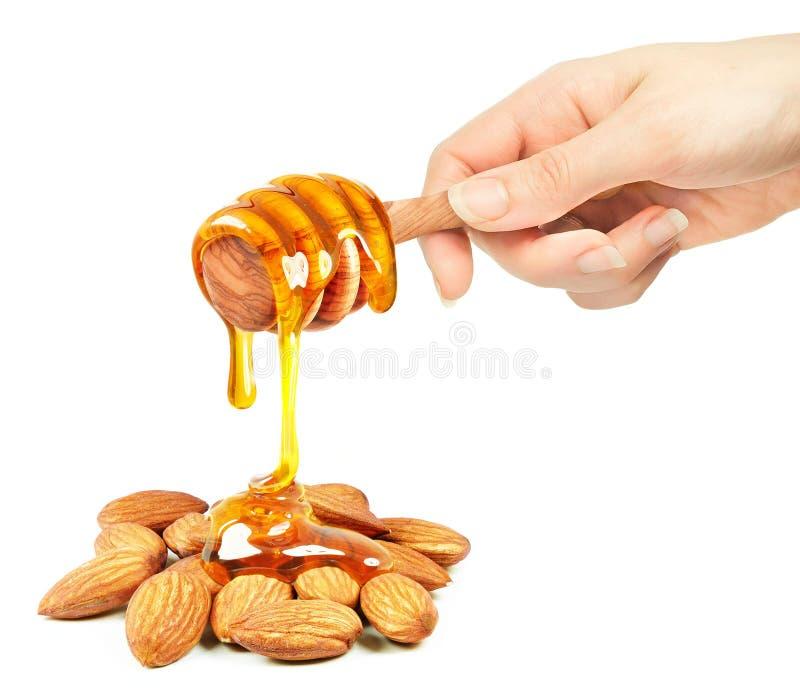 Αμύγδαλα με το μέλι στοκ εικόνες