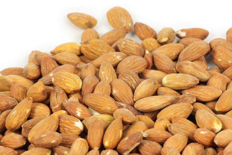 Download αμύγδαλο στοκ εικόνα. εικόνα από καρύδια, τρόφιμα, φουντούκι - 13186131