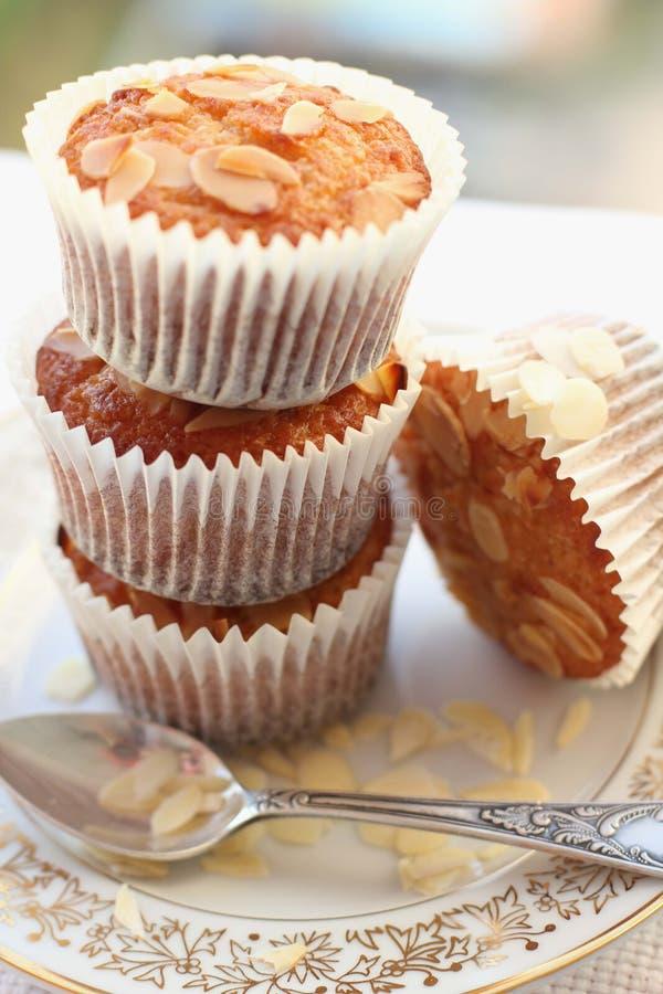 αμύγδαλο cupcakes στοκ εικόνα