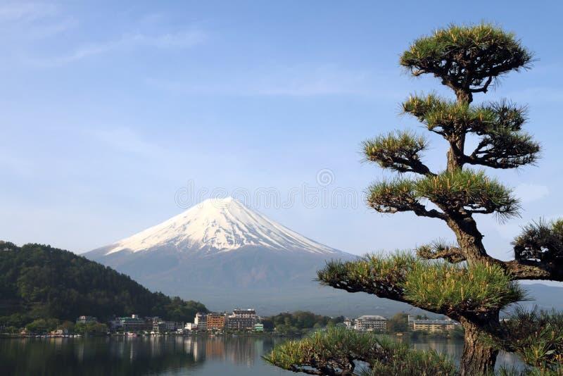 ΑΜ της Ιαπωνίας fuji στοκ εικόνες