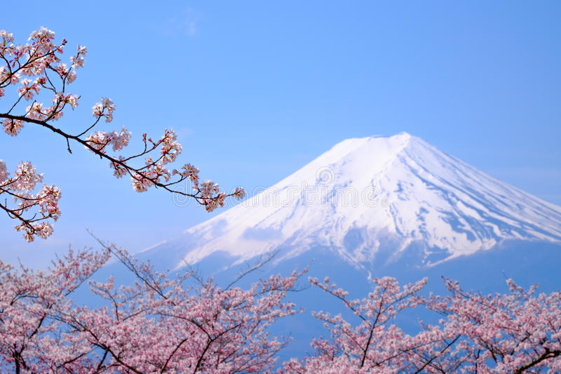 ΑΜ Φούτζι και άνθος κερασιών στην εποχή άνοιξης της Ιαπωνίας (ιαπωνική θερμ. στοκ εικόνες με δικαίωμα ελεύθερης χρήσης