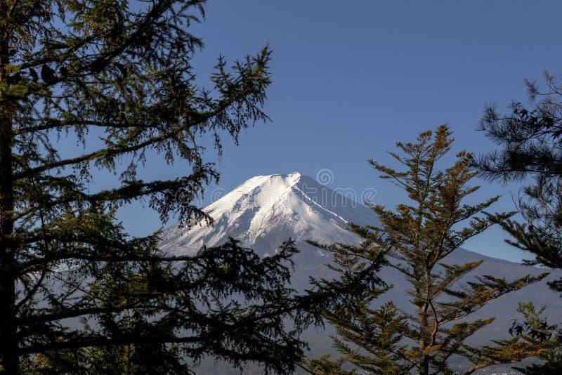 ΑΜ Φούτζι με το υπόβαθρο δέντρων μπλε ουρανού και πεύκων στοκ φωτογραφία με δικαίωμα ελεύθερης χρήσης