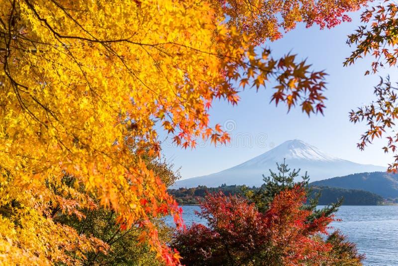 ΑΜ Φούτζι το φθινόπωρο στο kawaguchiko λιμνών στην Ιαπωνία στοκ φωτογραφία με δικαίωμα ελεύθερης χρήσης