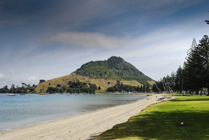 ΑΜ Maunganui και παραλία στοκ εικόνα