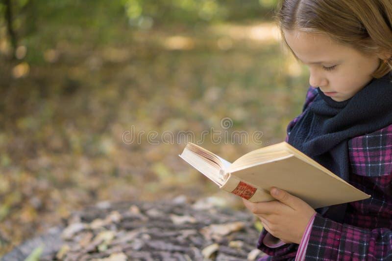 Ανάγνωση βιβλίων στο πάρκο στοκ εικόνα