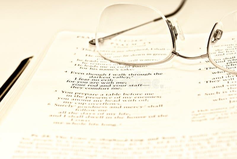 ανάγνωση σπασιμάτων στοκ φωτογραφία με δικαίωμα ελεύθερης χρήσης