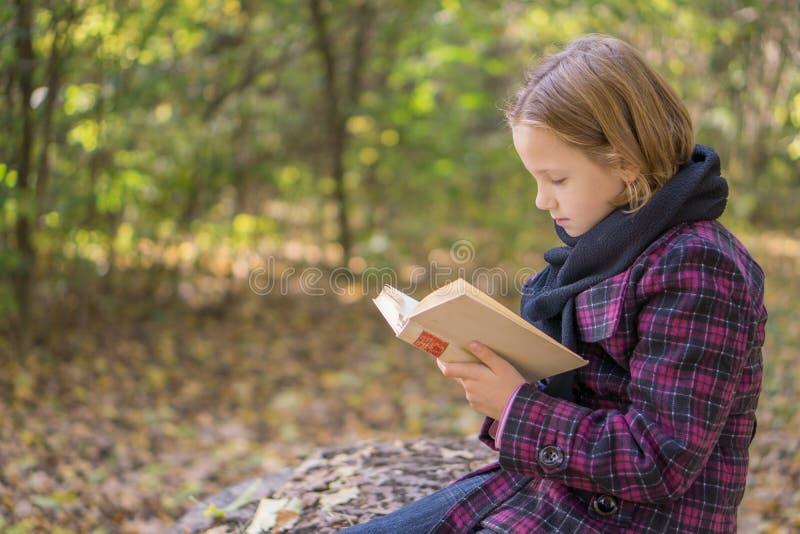 Ανάγνωση στο πάρκο στοκ εικόνες με δικαίωμα ελεύθερης χρήσης