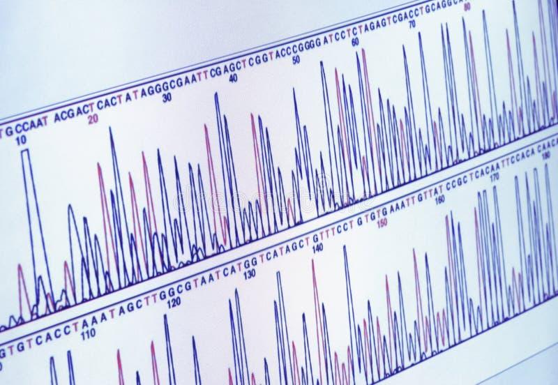 ανάλυση της οθόνης επιστήμης γραφικών παραστάσεων στοκ φωτογραφία με δικαίωμα ελεύθερης χρήσης