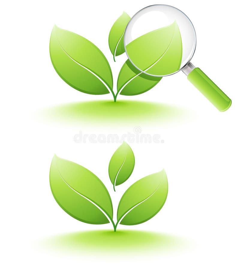 ανάλυση των νεολαιών φυτώ&n διανυσματική απεικόνιση