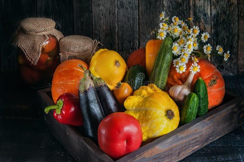 Ανάμεικτα λαχανικά, κολοκύθα, κολοκύθια, μελιτζάνα, σκόρδο, πράσινα κρεμμύδια, και ντομάτες σε ένα ξύλινο υπόβαθρο σε αγροτικό στοκ εικόνες