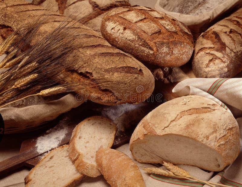 ανάμεικτες φραντζόλες ψωμιού στοκ εικόνα