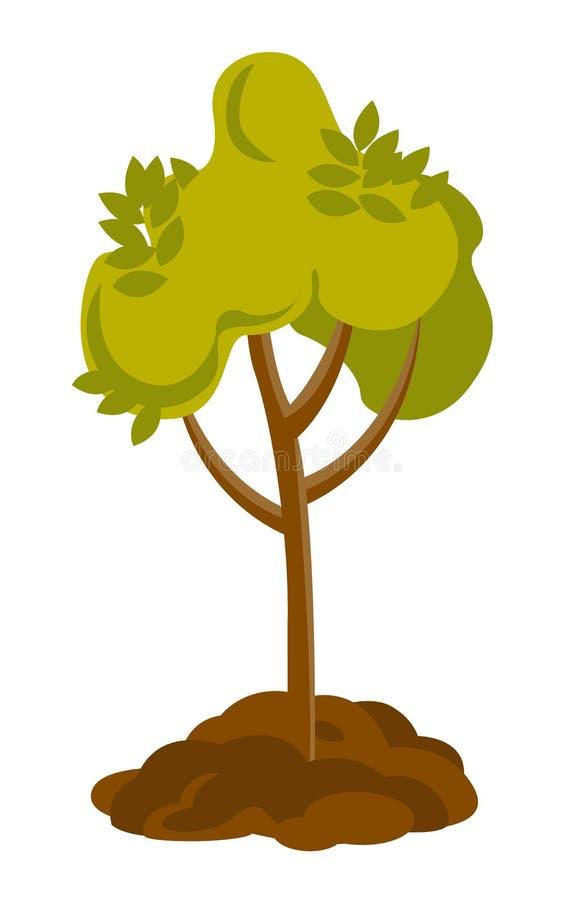 Ανάπτυξη δέντρων στην εδαφολογική διανυσματική απεικόνιση απεικόνιση αποθεμάτων