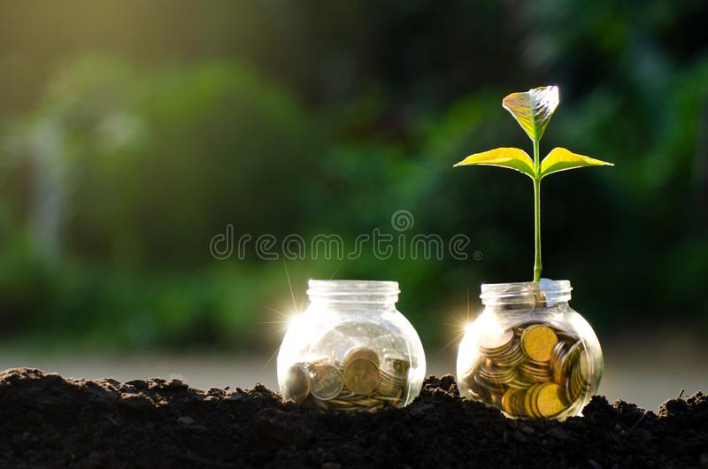 Ανάπτυξη εγκαταστάσεων βάζων γυαλιού δέντρων νομισμάτων χρυσών μεταλλίων από τα νομίσματα έξω από το βάζο γυαλιού στη θολωμένη πρ στοκ φωτογραφία