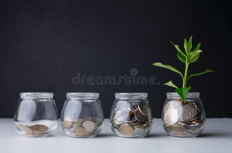 Ανάπτυξη εγκαταστάσεων στα νομίσματα στο βάζο γυαλιού στοκ φωτογραφία