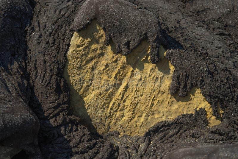 Ανάχωμα θάλασσας στο λιμάνι Harlingen Εκτεθειμένος βράχος που καλύφθηκε με την άσφαλτο στοκ εικόνες