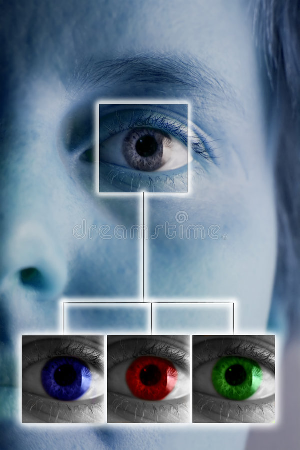 Download ανίχνευση ίριδων απεικόνιση αποθεμάτων. εικονογραφία από βιο - 385560