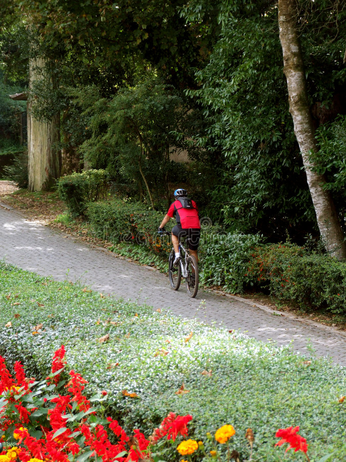 αναβάτης ποδηλάτων στοκ φωτογραφίες