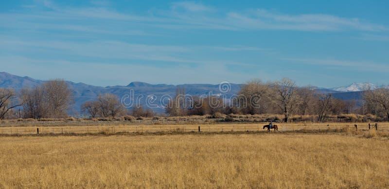Αναβάτης πλατών αλόγου σε μια εθνική οδό στοκ εικόνα με δικαίωμα ελεύθερης χρήσης