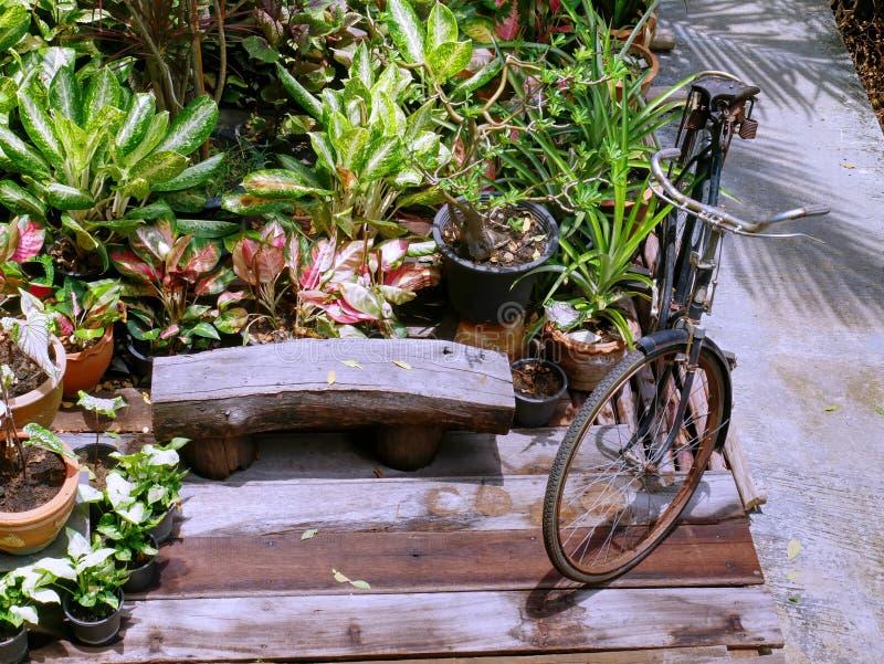 Αναδρομικός χώρος στάθμευσης ποδηλάτων στον κήπο με το ξύλινο κάθισμα και τις διάφορες σε δοχείο εγκαταστάσεις στοκ εικόνα με δικαίωμα ελεύθερης χρήσης