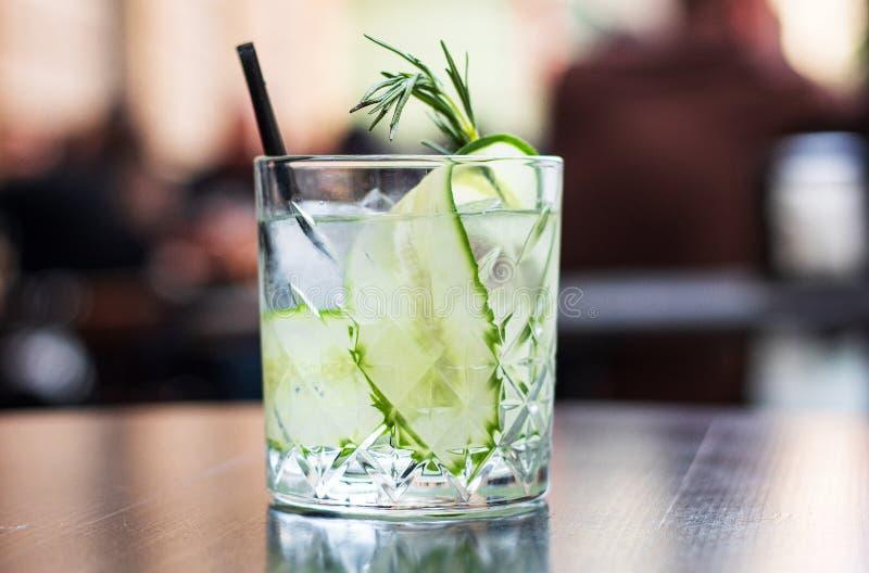 Αναζωογονώντας θερινά κοκτέιλ, martinis, τζιν και τονωτικό στοκ εικόνα