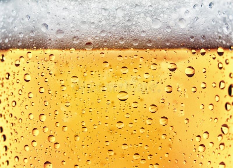 Αναζωογονώντας μπύρα στοκ φωτογραφία