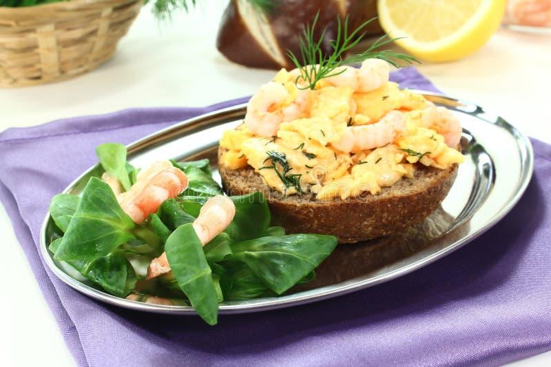 ανακατωμένες αυγά γαρίδες άνηθου στοκ φωτογραφίες με δικαίωμα ελεύθερης χρήσης