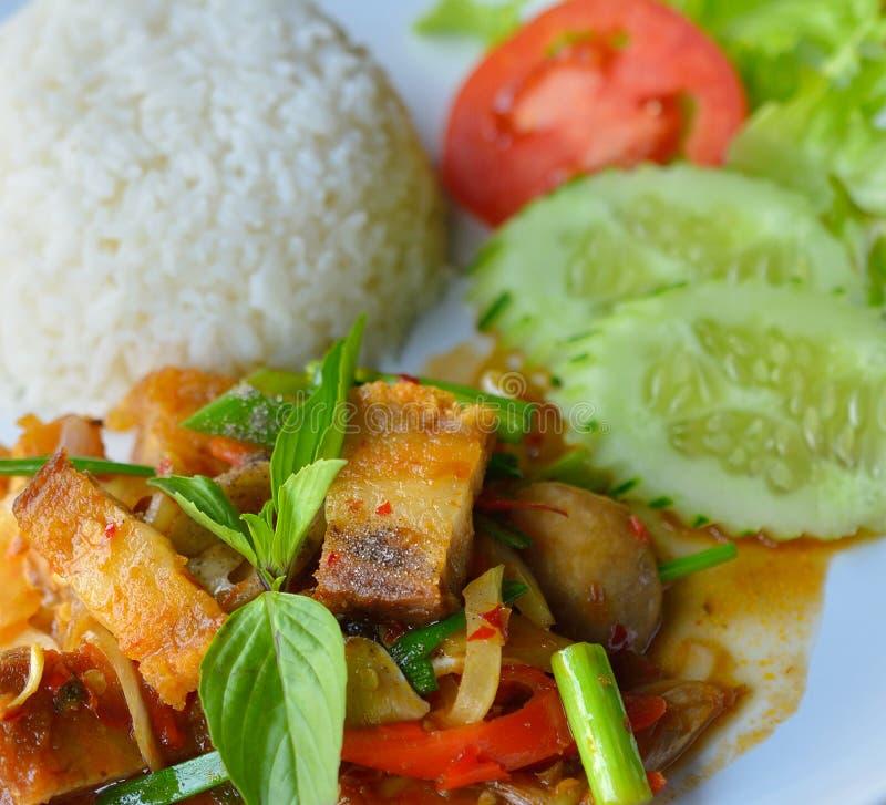 Ανακατώνω-τηγανισμένο τριζάτο χοιρινό κρέας με το ρύζι στο άσπρο πιάτο στοκ εικόνα