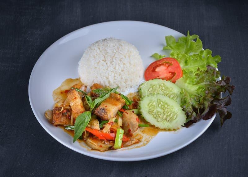 Ανακατώνω-τηγανισμένο τριζάτο χοιρινό κρέας με το ρύζι στο άσπρο πιάτο στοκ εικόνες με δικαίωμα ελεύθερης χρήσης