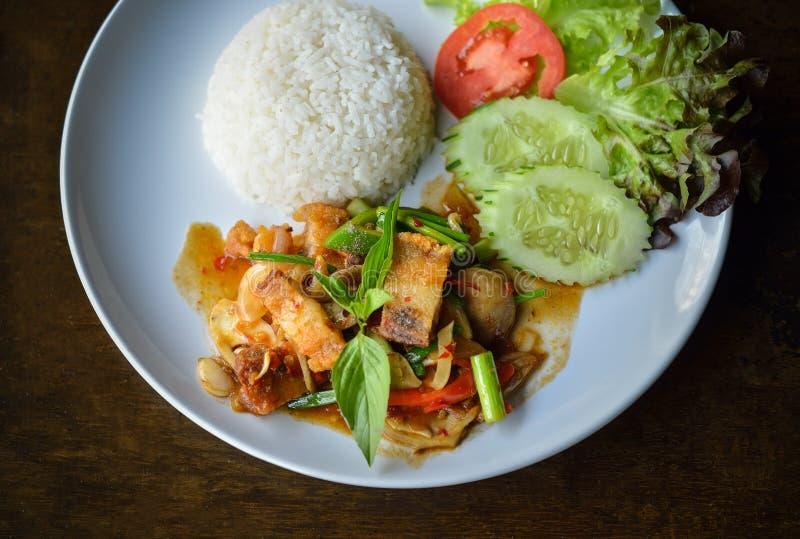 Ανακατώνω-τηγανισμένο τριζάτο χοιρινό κρέας με το ρύζι στο άσπρο πιάτο στοκ φωτογραφία με δικαίωμα ελεύθερης χρήσης
