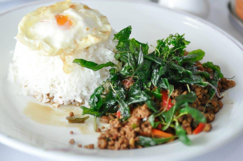 Ανακατώνω-τηγανισμένο χοιρινό κρέας με το τηγανισμένο αυγό, τον ιερούς βασιλικό και το ρύζι στοκ εικόνες