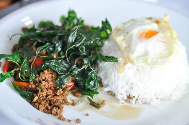 Ανακατώνω-τηγανισμένο χοιρινό κρέας με το τηγανισμένο αυγό, τον ιερούς βασιλικό και το ρύζι στοκ εικόνες με δικαίωμα ελεύθερης χρήσης