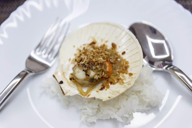 Ανακατώνω-τηγανισμένο όστρακο με το σκόρδο στο άσπρο πιάτο με το ρύζι στοκ εικόνες