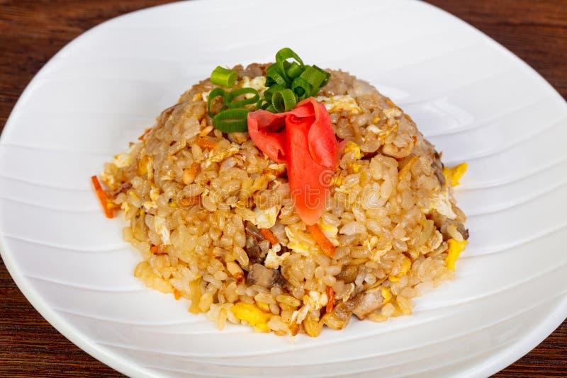 Ανακατώστε το ρύζι τηγανητών με το κοτόπουλο στοκ φωτογραφία με δικαίωμα ελεύθερης χρήσης