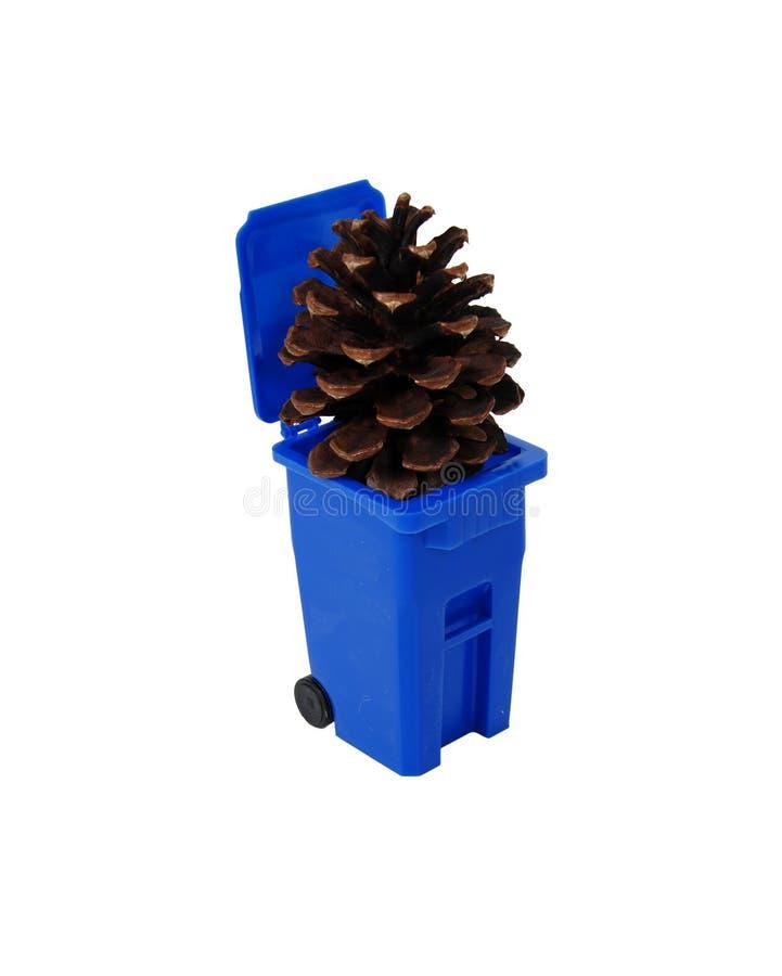 ανακύκλωση pinecone δοχείων στοκ φωτογραφίες με δικαίωμα ελεύθερης χρήσης