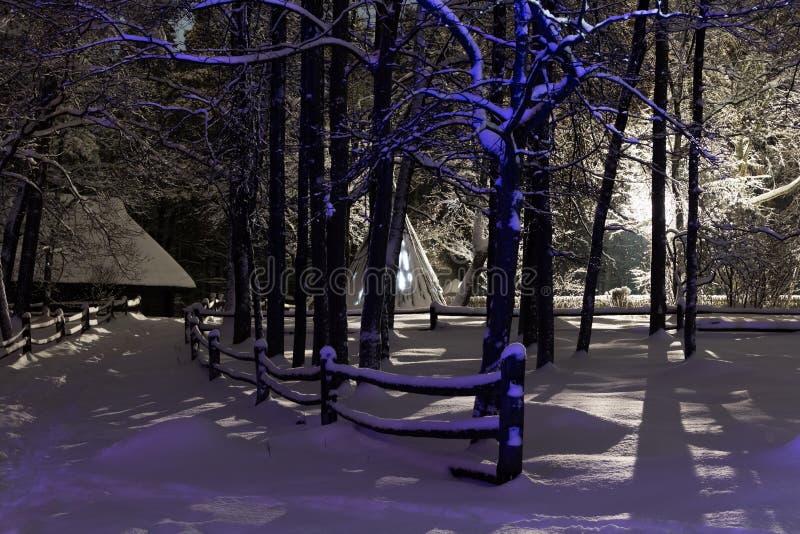 Αναμμένο δάσος στοκ φωτογραφία με δικαίωμα ελεύθερης χρήσης