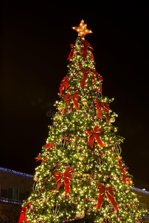 Αναμμένο χριστουγεννιάτικο δέντρο ενάντια στο νυχτερινό ουρανό στοκ φωτογραφία