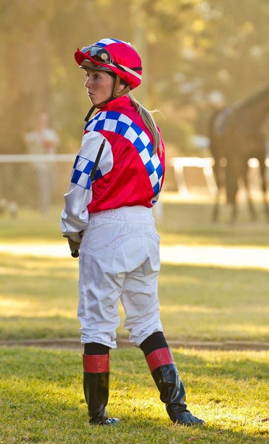 Αναμονή ένα άλογο αγώνων στοκ φωτογραφία με δικαίωμα ελεύθερης χρήσης